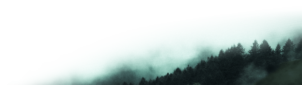 kolaritsch multimedia arts forest bottom